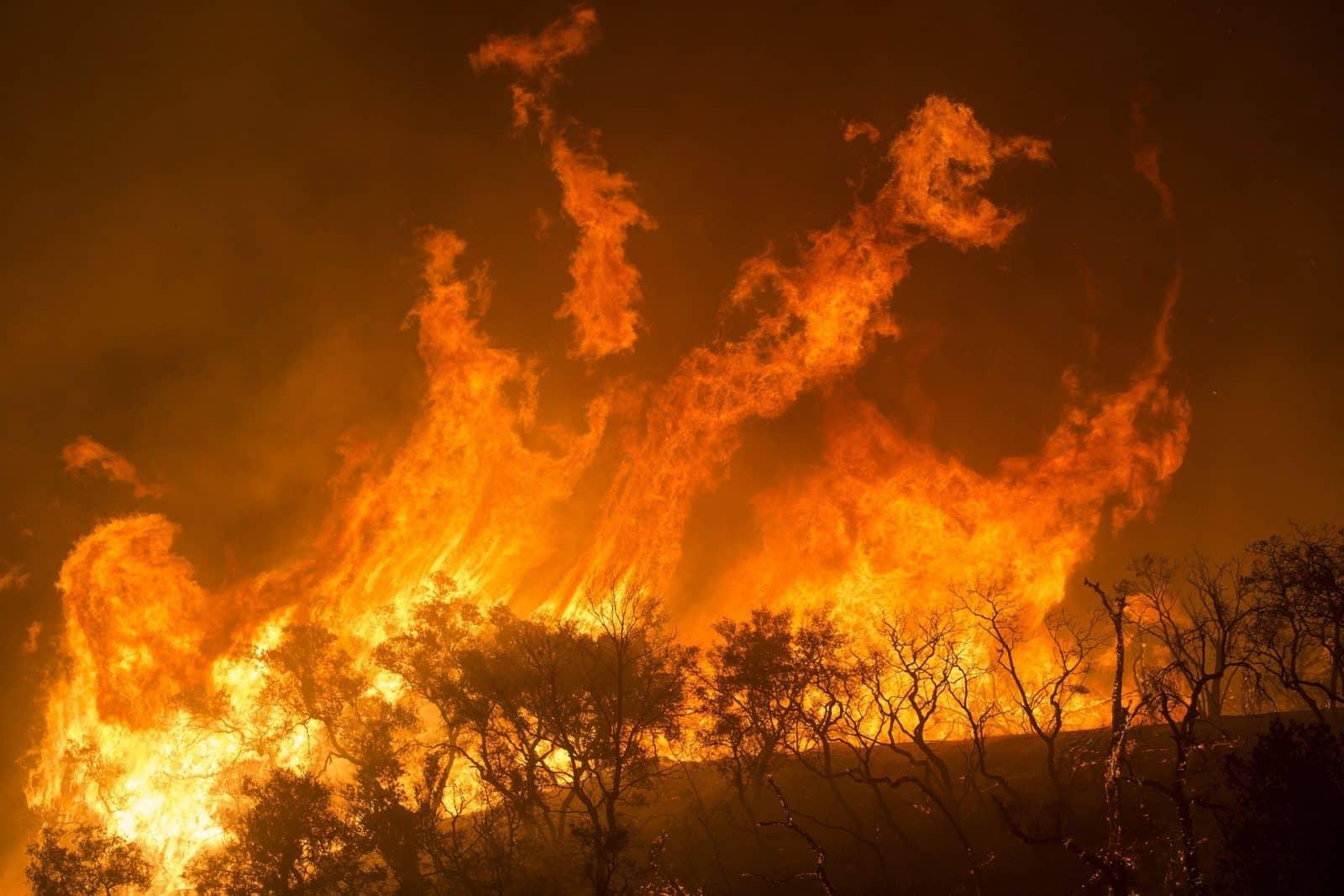 Incêndios florestais na Califórnia têm afetado a vida de milhares de pessoas que foram obrigadas a deixar suas casas para salvar as suas vidas e de suas famílias.